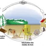 valorisation-residus-bois-ecologie-pellets